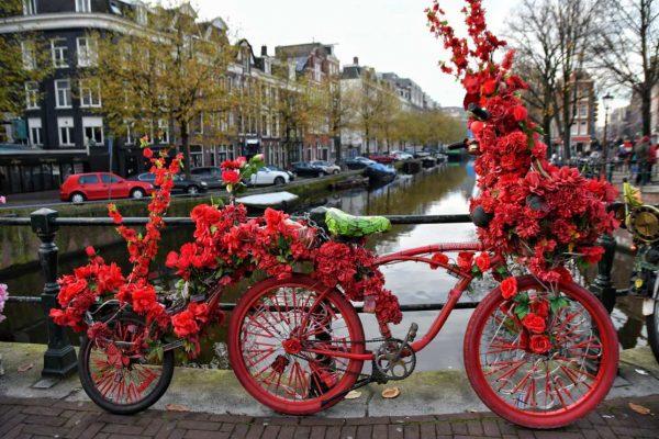 """""""biciclette fiori rossi amsterdam"""""""