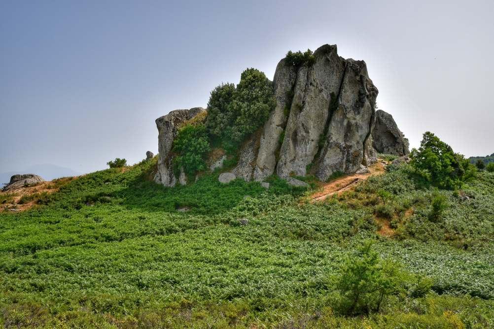 """""""uno dei monoliti nell altopiano agrimusco roccia antica milioni di anni circondata dal verde della natura"""""""